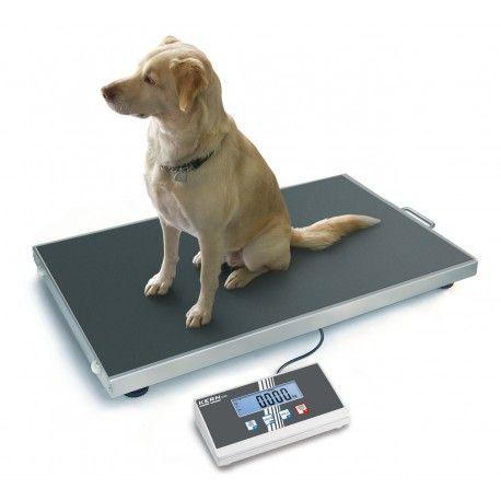 Bilancia Veterinaria per Cani
