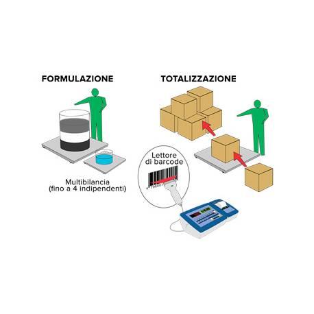 Esempio applicazione Software formulazione totalizzazione